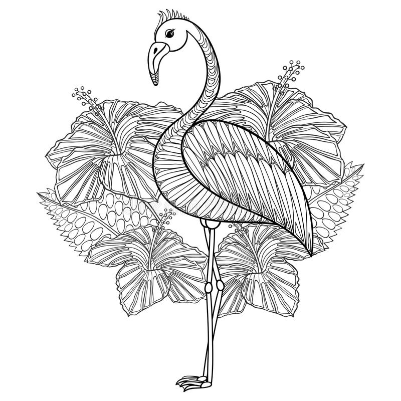 Página que colorea con el flamenco en hibiskus ilustración del vector
