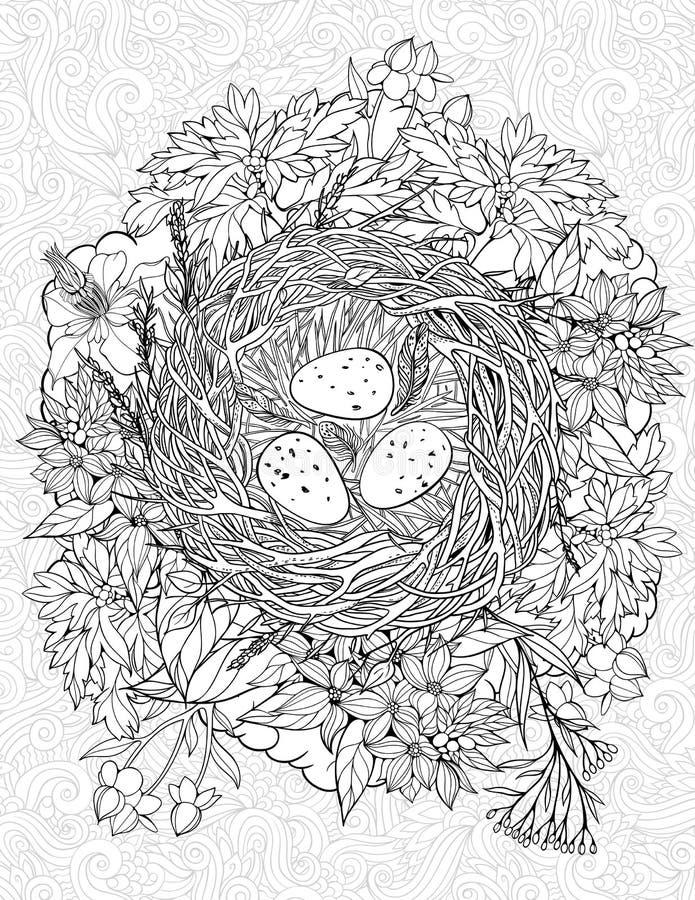 Página que colorea con una jerarquía y los huevos de los pájaros libre illustration