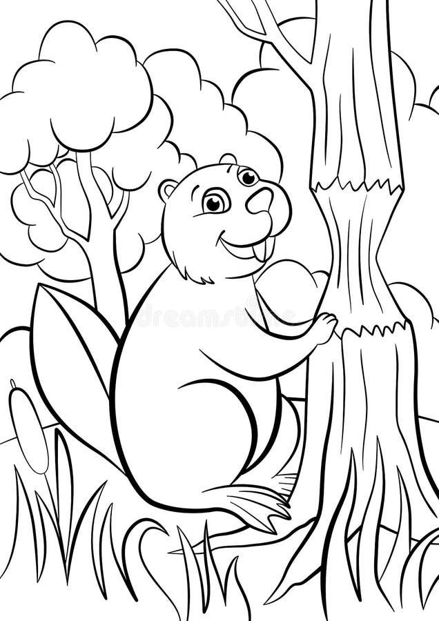 Páginas da coloração animais Castor bonito pequeno ilustração do vetor