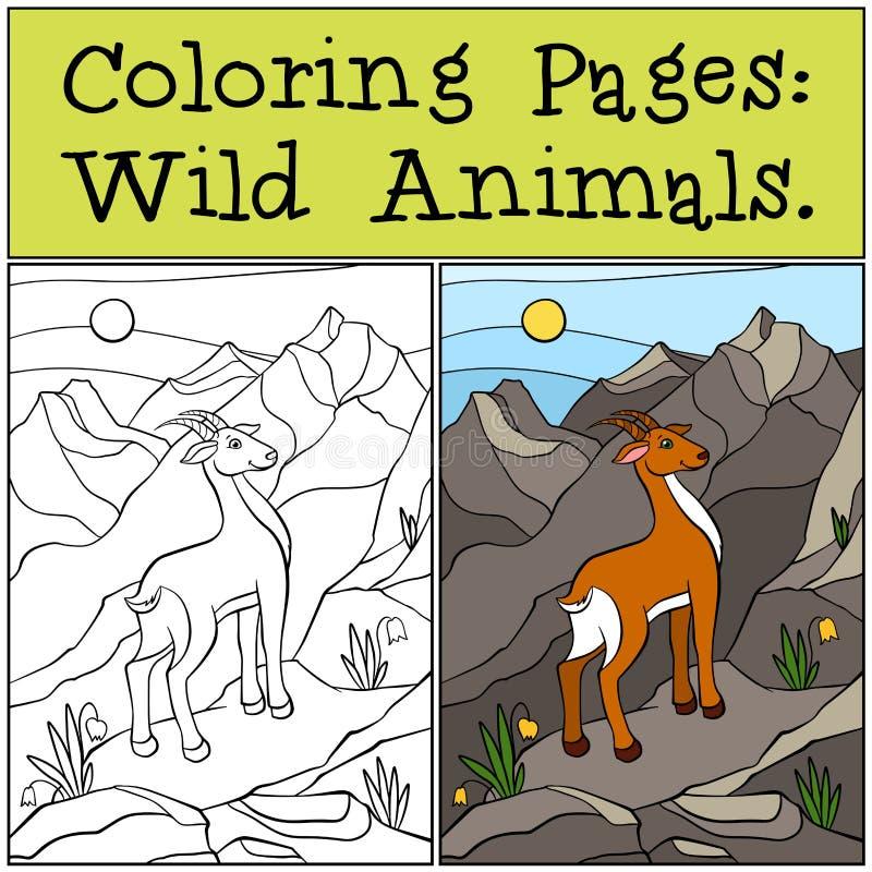 Páginas da coloração: Animais selvagens Antílope bonito pequeno ilustração royalty free