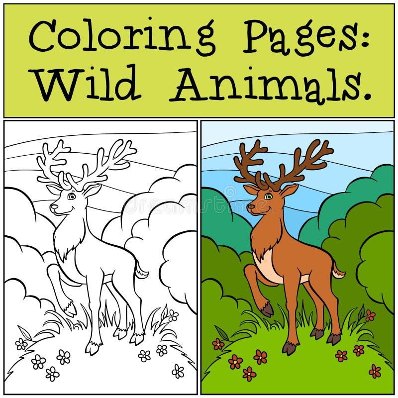 Páginas da coloração: Animais selvagens Cervos bonitos ilustração do vetor