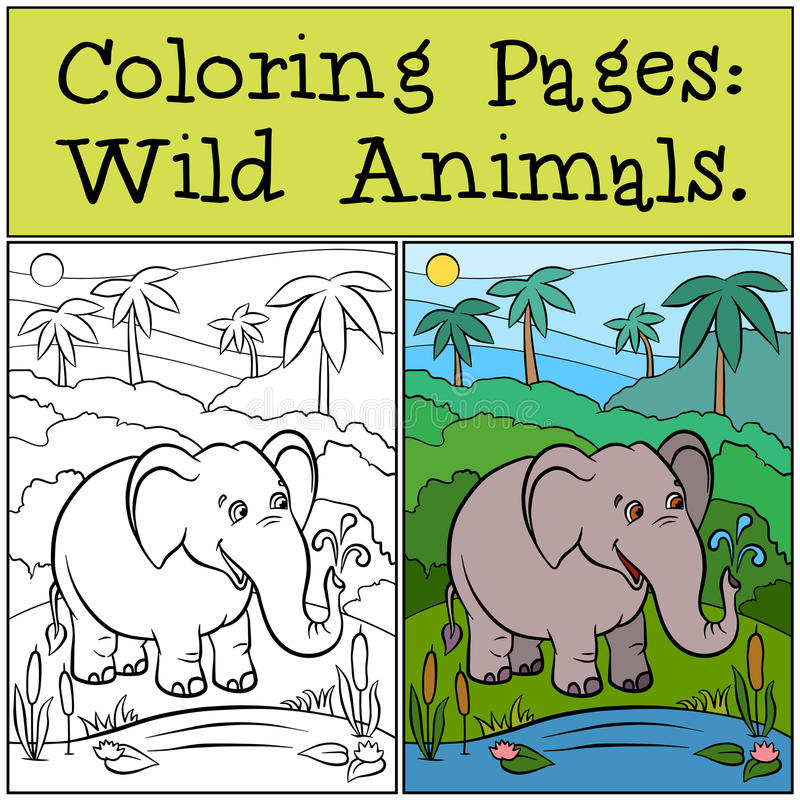Páginas da coloração: Animais selvagens Elefante bonito ilustração do vetor