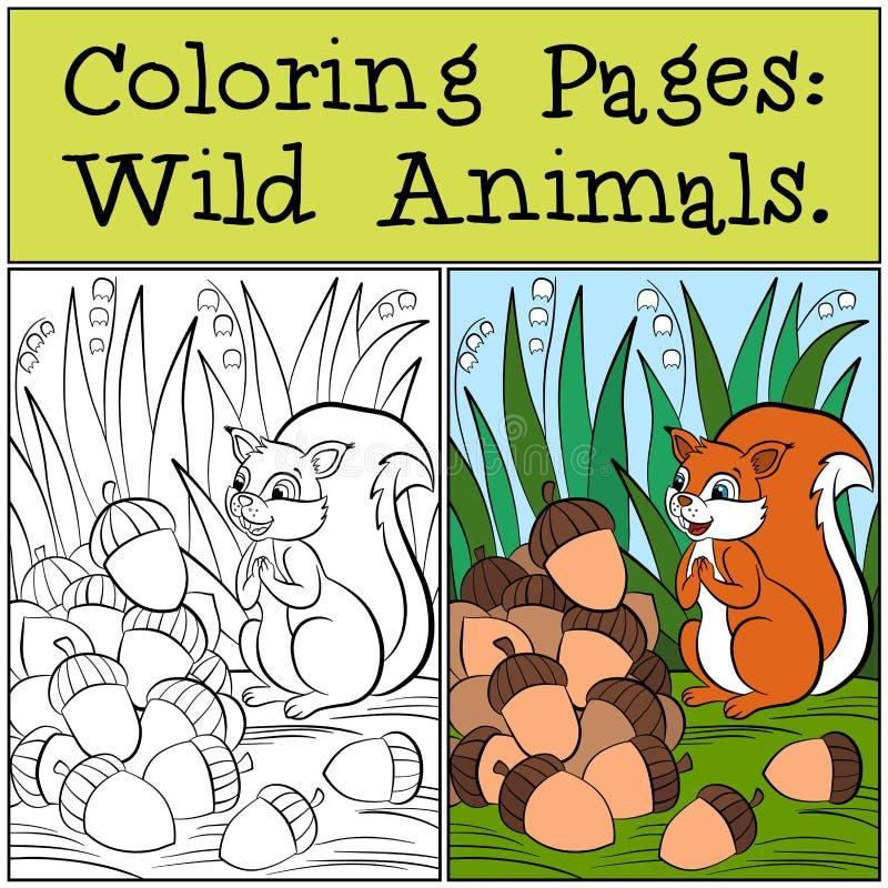 Páginas da coloração: Animais selvagens Esquilo bonito pequeno ilustração do vetor