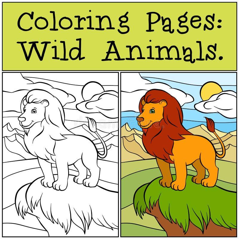 Páginas da coloração: Animais selvagens Leão bonito bonito ilustração royalty free