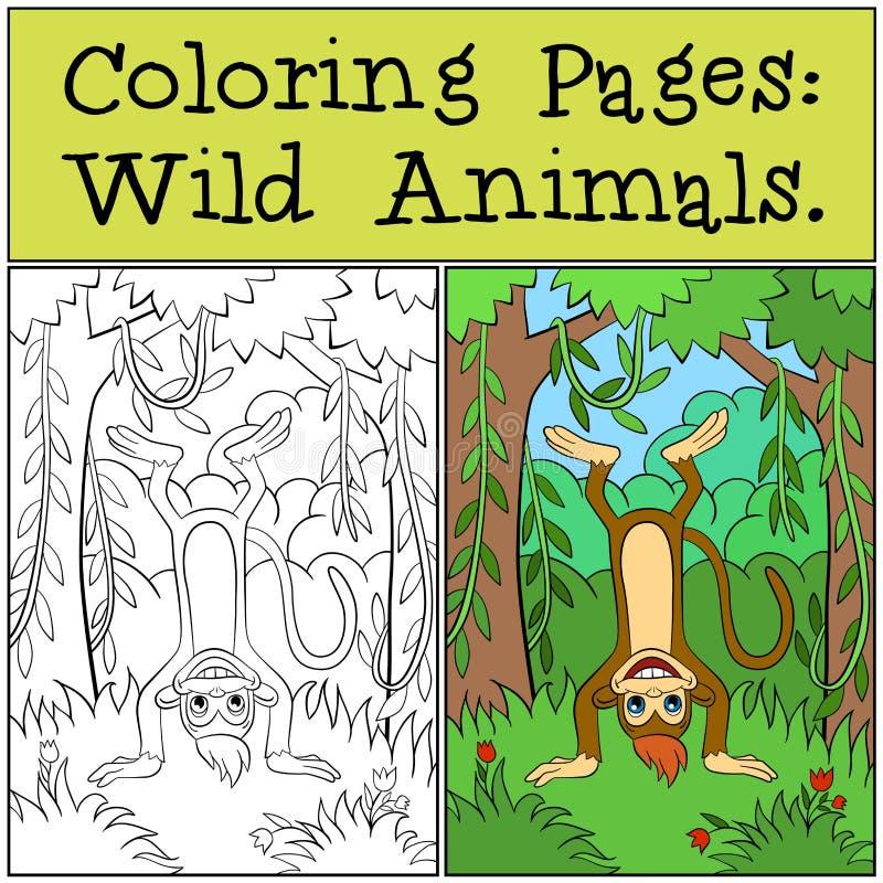 Páginas da coloração: Animais selvagens Macaco bonito pequeno ilustração stock