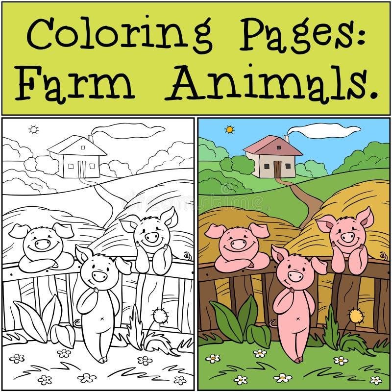 Páginas de cores: Animais de exploração Três porcos bonitos estão perto da cerca na fazenda ilustração do vetor