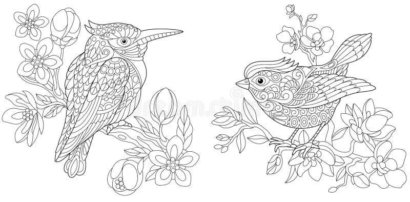 Páginas del colorante con el martín pescador y el pájaro amarillo ilustración del vector