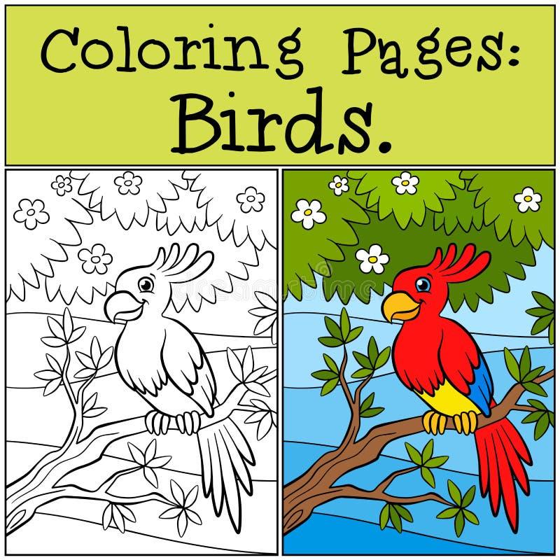 Páginas del colorante: Pájaros Pequeño loro lindo stock de ilustración