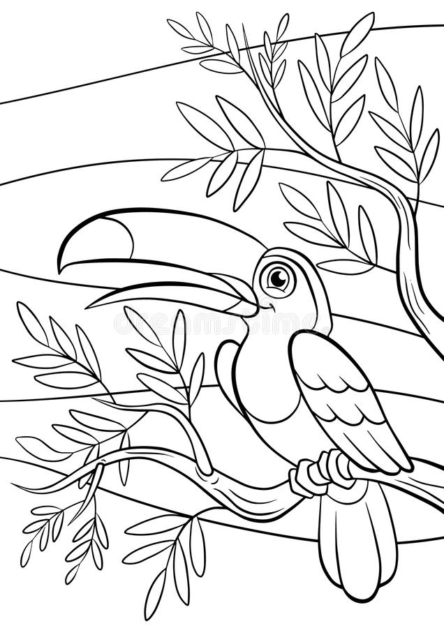 Páginas del colorante pájaros Pequeño tucán lindo stock de ilustración