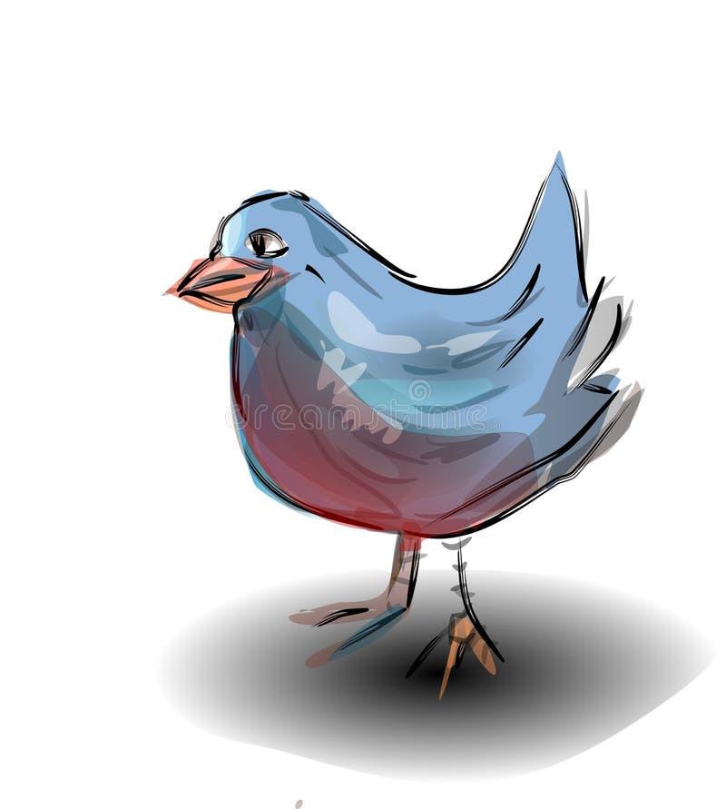 Pájaro azul imágenes de archivo libres de regalías