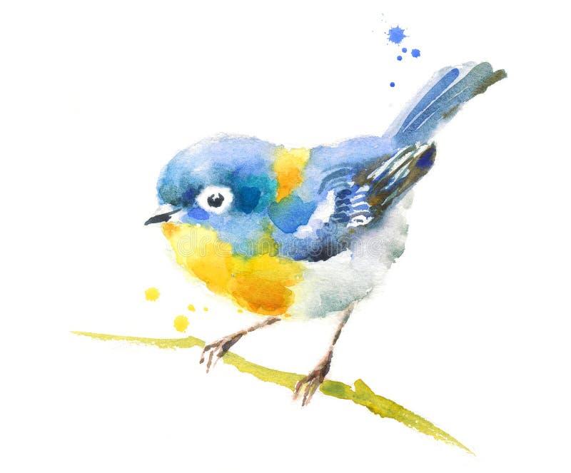 Pájaro azul en la rama ilustración del vector