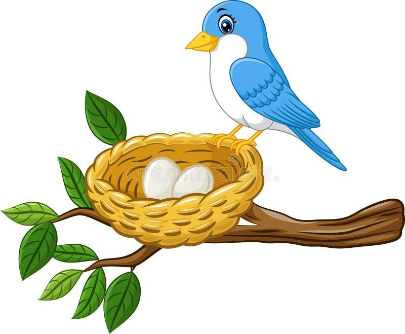 Pájaro con el huevo en la jerarquía aislada en el fondo blanco ilustración del vector