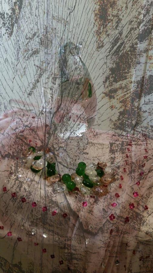 Pájaro de cristal imagen de archivo