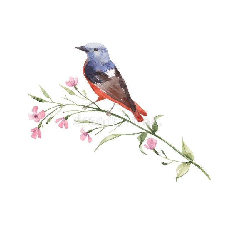 Pájaro de la acuarela en la flor stock de ilustración