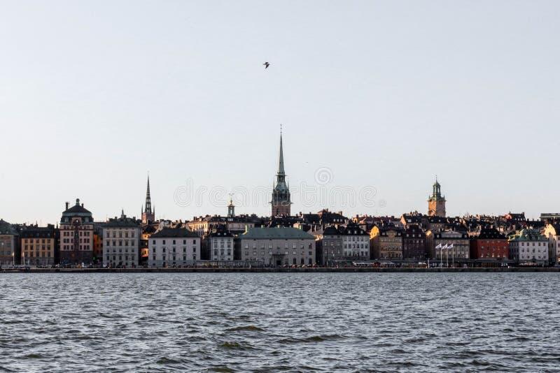 Pájaro de la ciudad de Estocolmo en el cielo foto de archivo