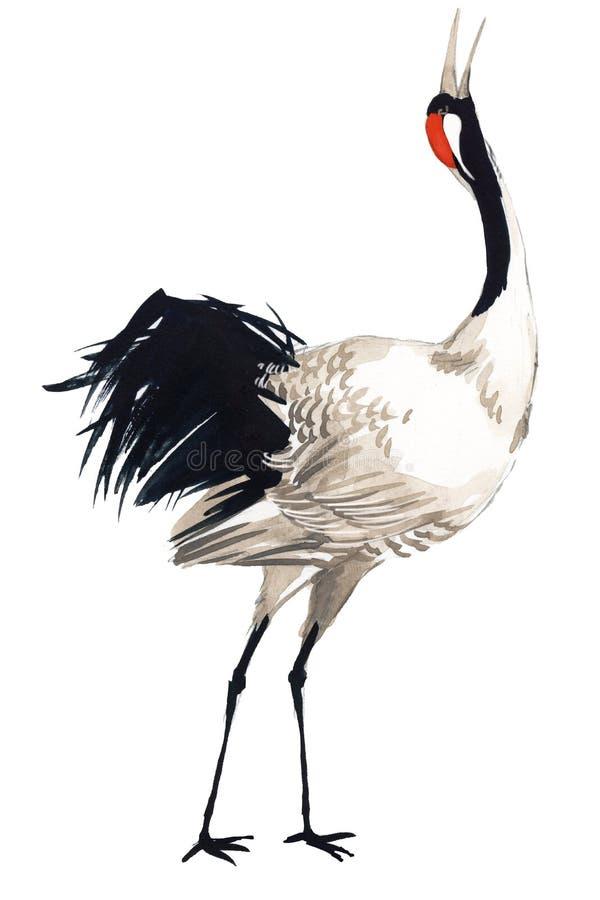 Pájaro de la grúa de la acuarela ilustración del vector