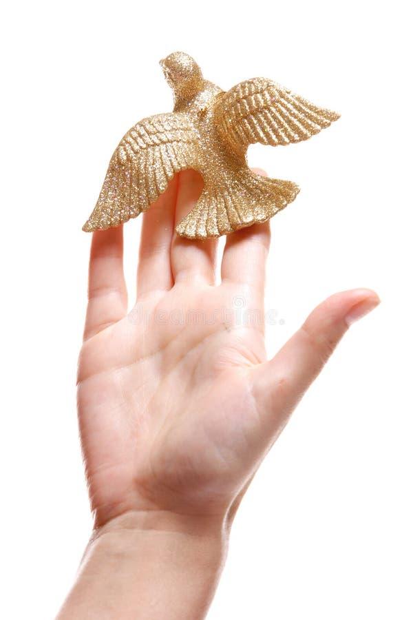 Pájaro de la tarjeta del día de San Valentín fotografía de archivo libre de regalías