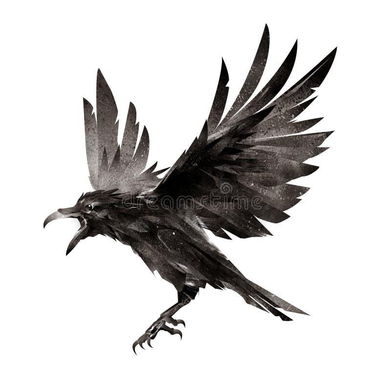 Pájaro de vuelo exhausto en el fondo blanco stock de ilustración