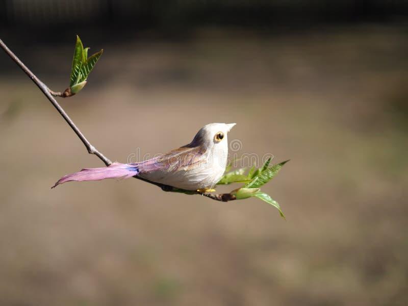 Pájaro decorativo artificial en una rama de árbol fotos de archivo libres de regalías