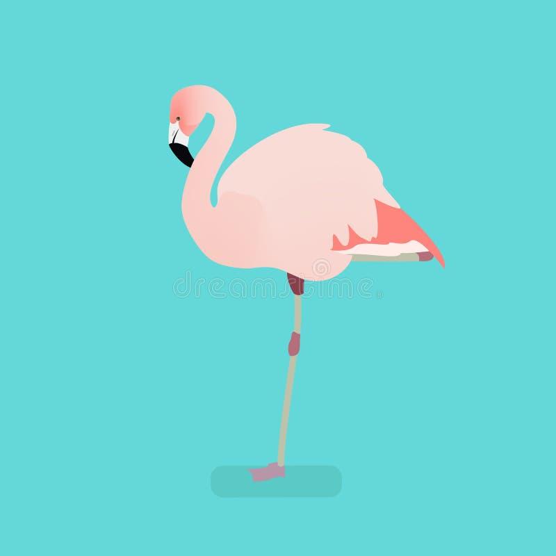 Pájaro del flamenco en una rama Ejemplo aislado de un fla imagen de archivo libre de regalías