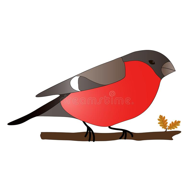 Pájaro del invierno del piñonero ilustración del vector