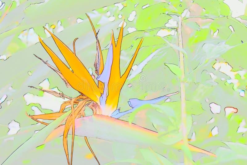 Pájaro del paraíso abstracto imagenes de archivo
