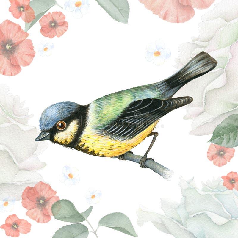 Pájaro del Tit de la acuarela en un fondo del vintage ilustración del vector