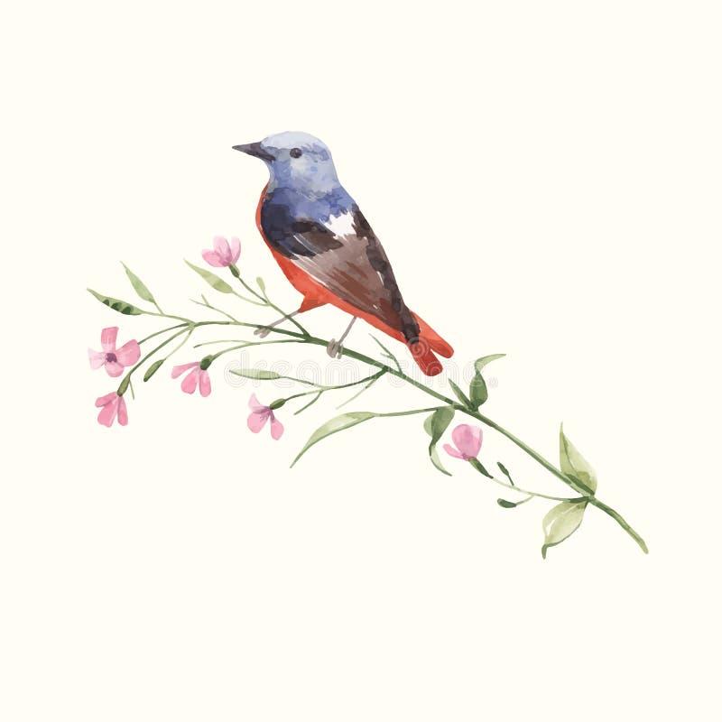 Pájaro del vector de la acuarela en la flor libre illustration