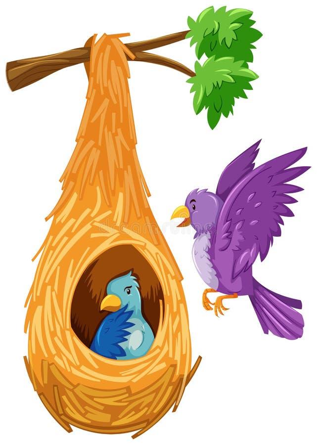Pájaro en y hacia fuera la jerarquía ilustración del vector