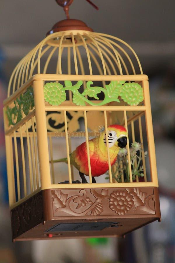 Pájaro enjaulado fotos de archivo libres de regalías