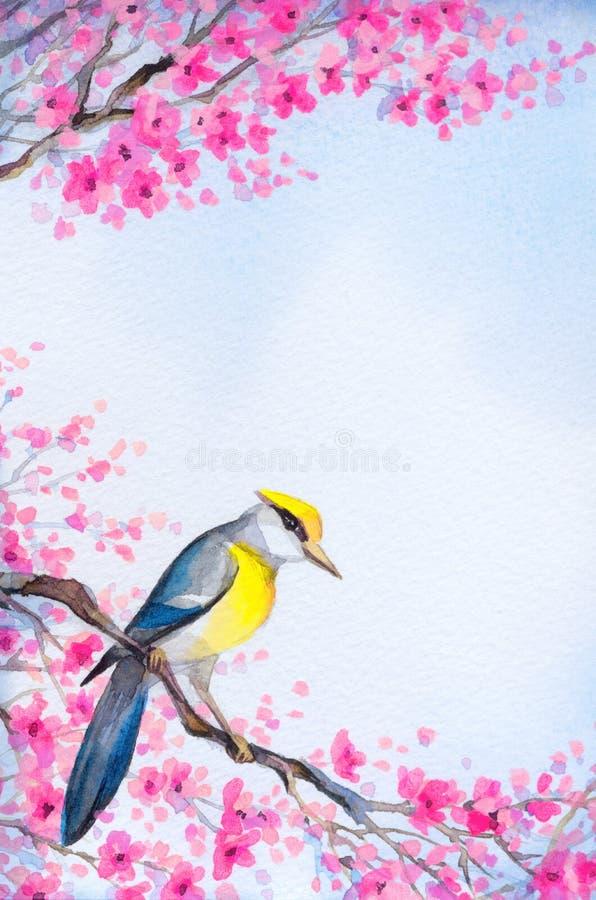 Pájaro hermoso en la ramificación floreciente Pintura de la acuarela ilustración del vector