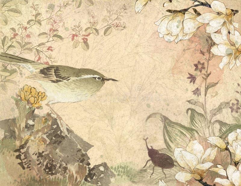 Pájaro japonés del siglo XVIII del vintage - documento de información floral - magnolias stock de ilustración
