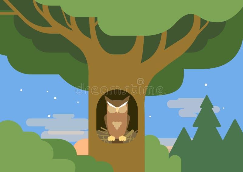 Pájaro plano del animal salvaje del vector de la historieta del hábitat hueco del bosque del búho ilustración del vector