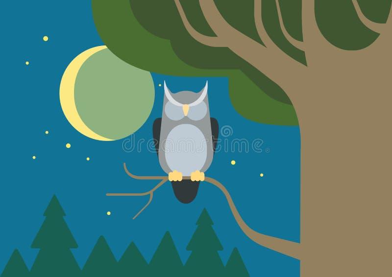 Pájaro plano del animal salvaje del vector de la historieta del hábitat hueco del bosque del búho libre illustration