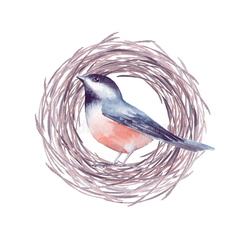 Pájaro y jerarquía 2 ilustración del vector