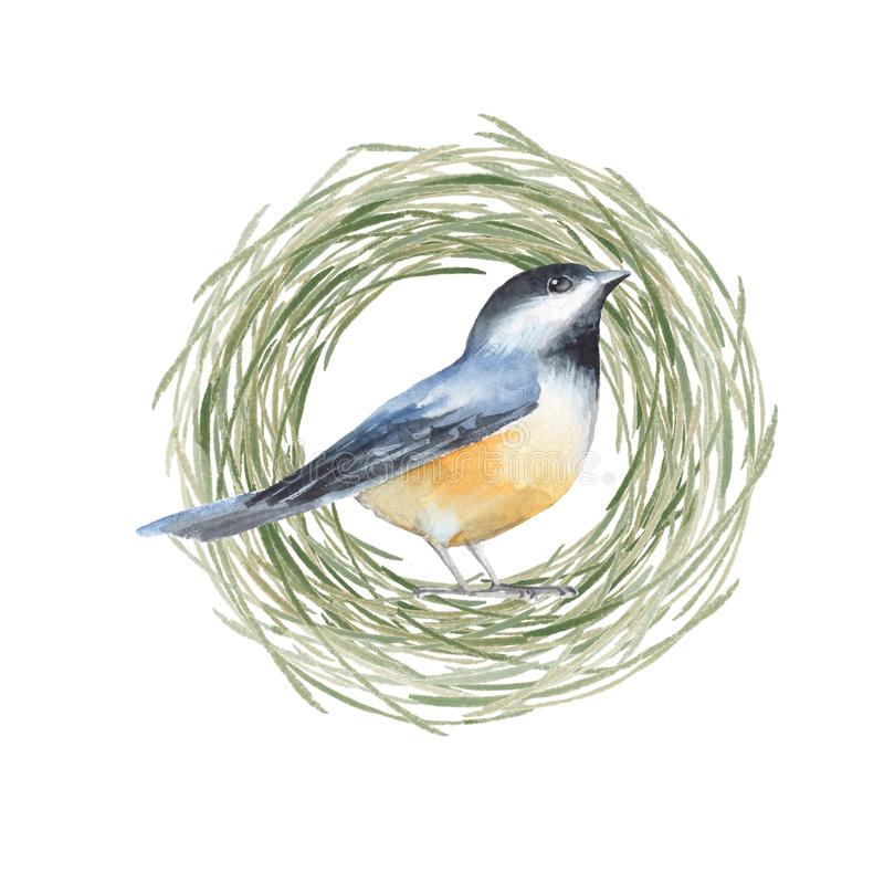 Pájaro y jerarquía stock de ilustración