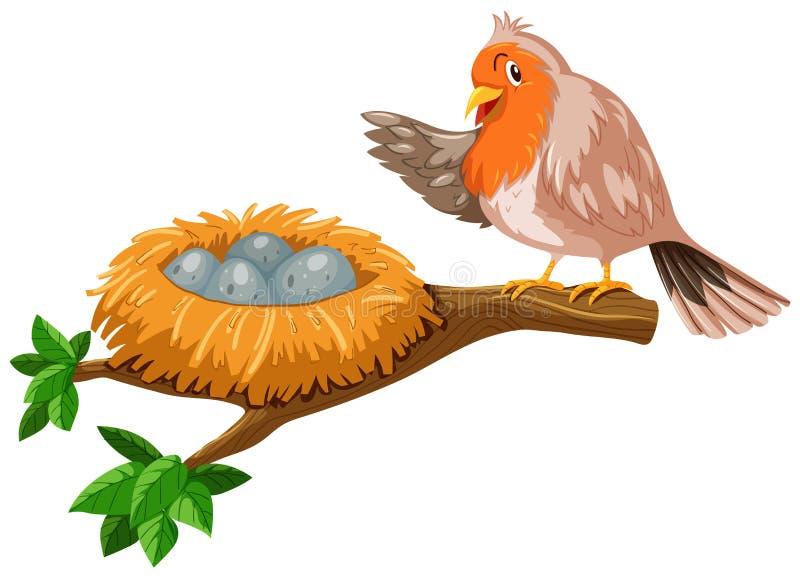 Pájaro y los huevos en la jerarquía stock de ilustración