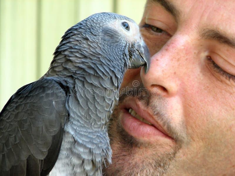 Pájaro y un hombre fotografía de archivo