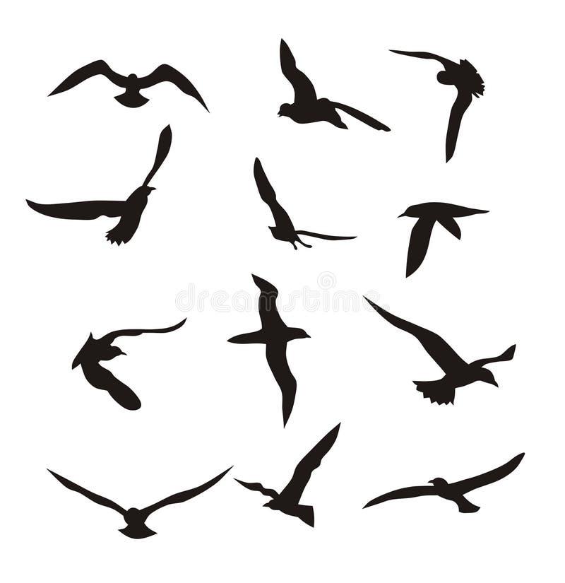 Pájaros stock de ilustración