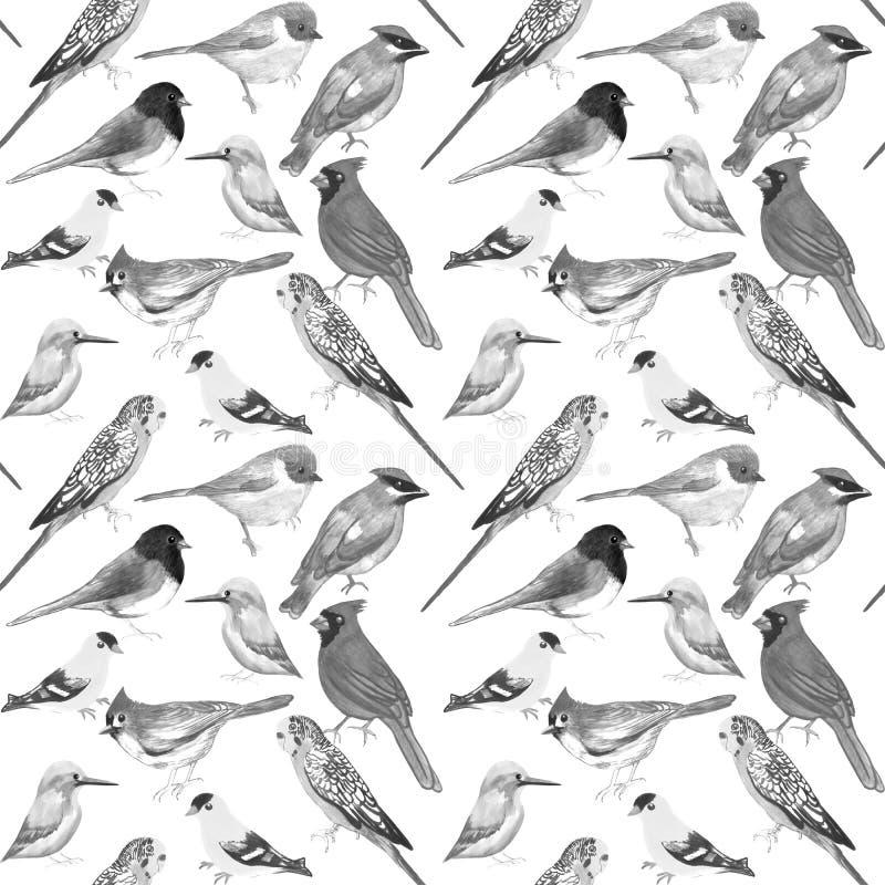 Pájaros blancos y negros contra ilustraciones inconsútiles del fondo blanco stock de ilustración