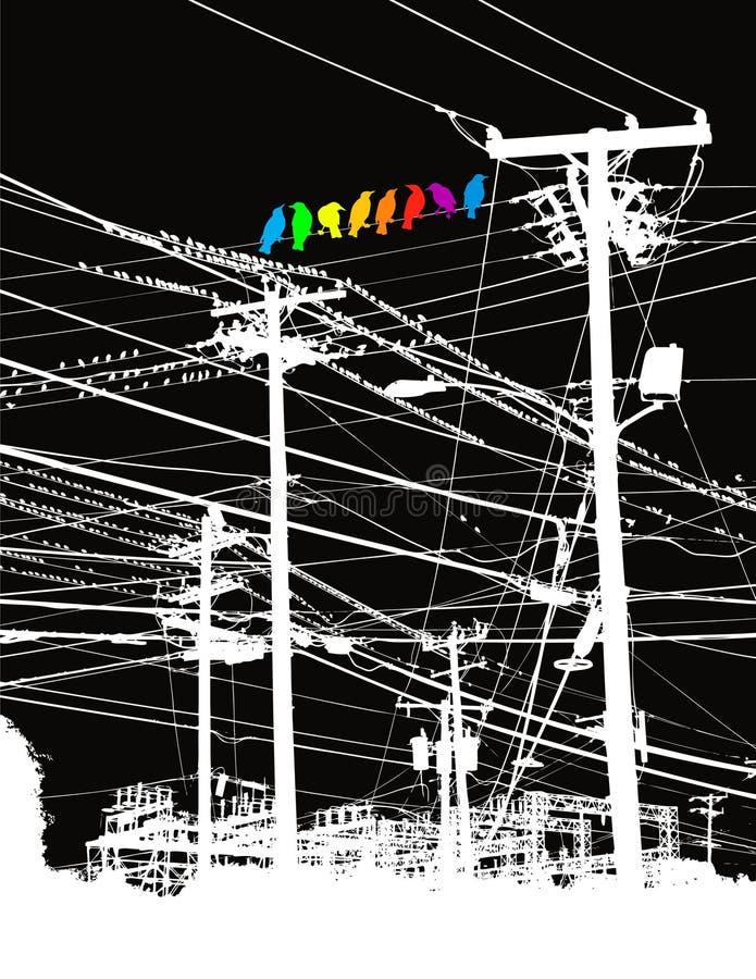Pájaros coloreados en líneas eléctricas stock de ilustración