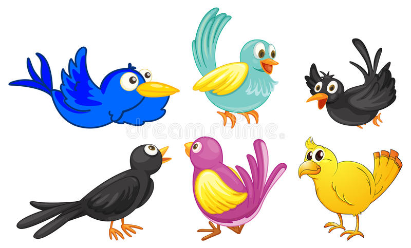 Pájaros con diversos colores stock de ilustración