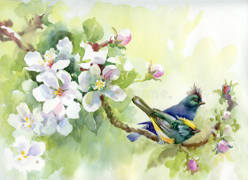 Pájaros de la colección de la pintura de la primavera stock de ilustración