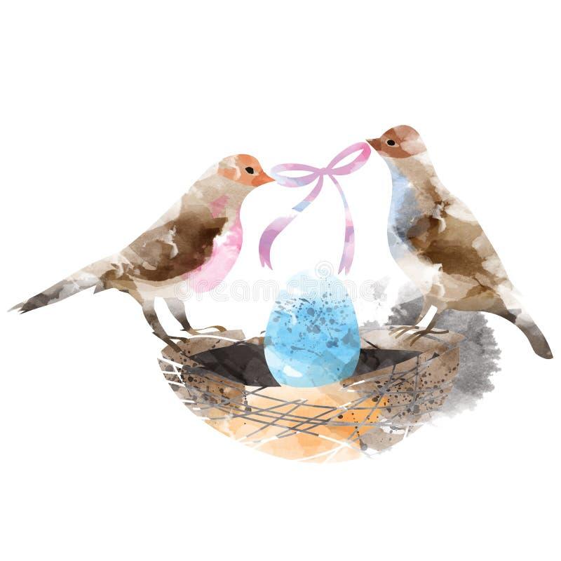 Pájaros de los pares en una jerarquía con los huevos stock de ilustración