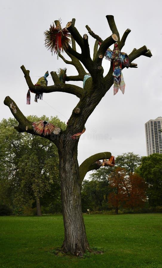 Pájaros de lujo imagen de archivo libre de regalías