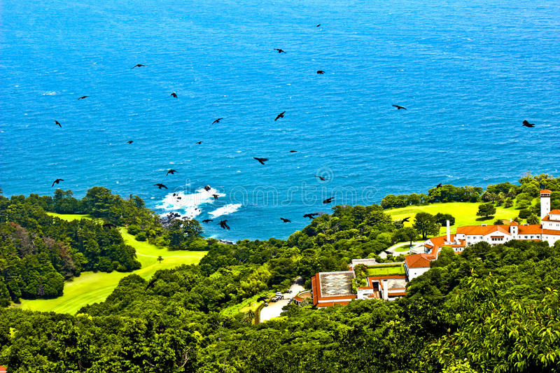 Download Pájaros de vuelo foto de archivo. Imagen de mosca, azul - 44853990