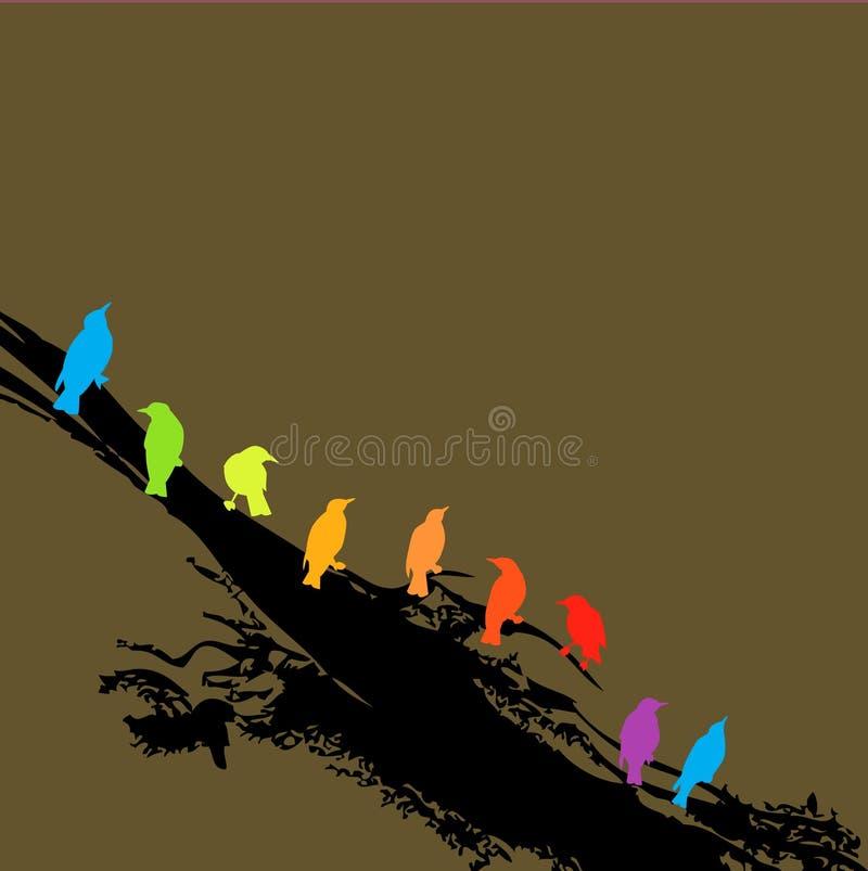 Pájaros del arco iris en una ramificación stock de ilustración