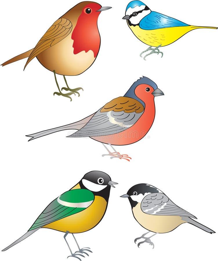 Pájaros del jardín fotografía de archivo