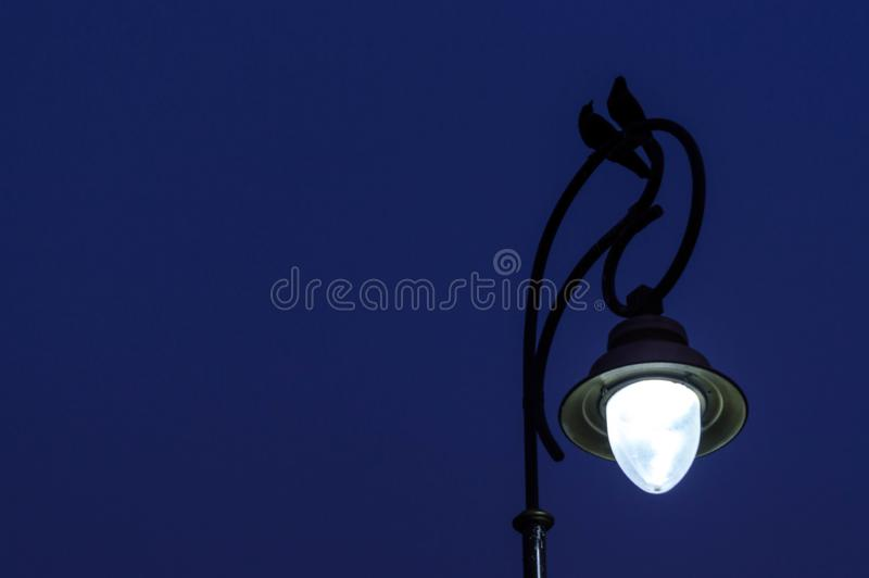 Pájaros en el poste de la lámpara imagen de archivo libre de regalías