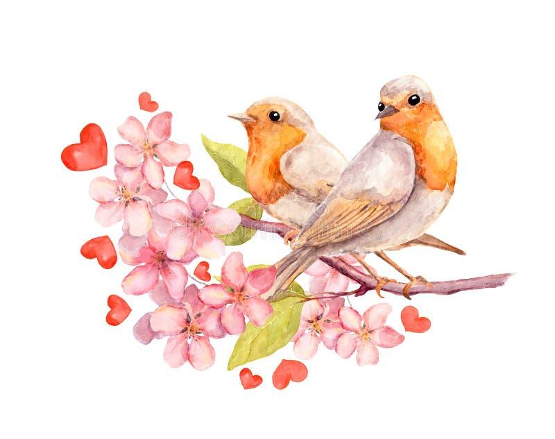 Pájaros en rama floreciente con las flores watercolor ilustración del vector